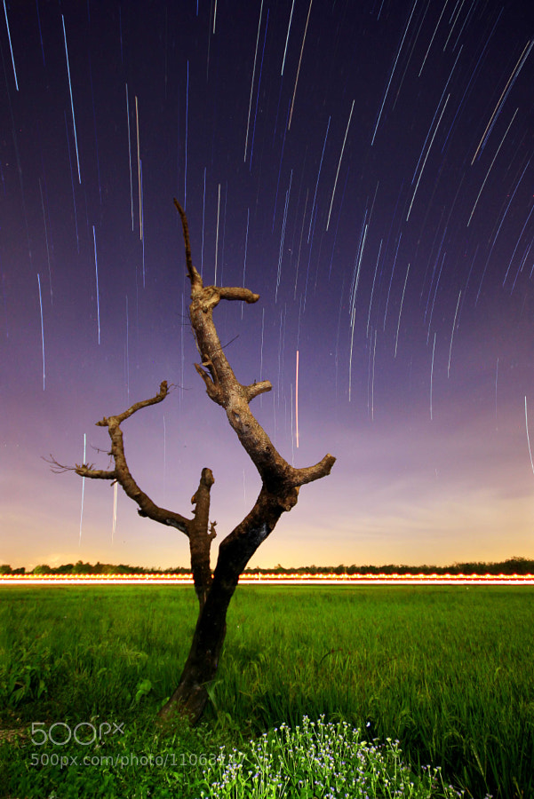 Photograph Star Trail + Light Trail by Abu Al-Afnan on 500px