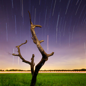 Star Trail + Light Trail by Abu Al-Afnan (abualabyan)) on 500px.com