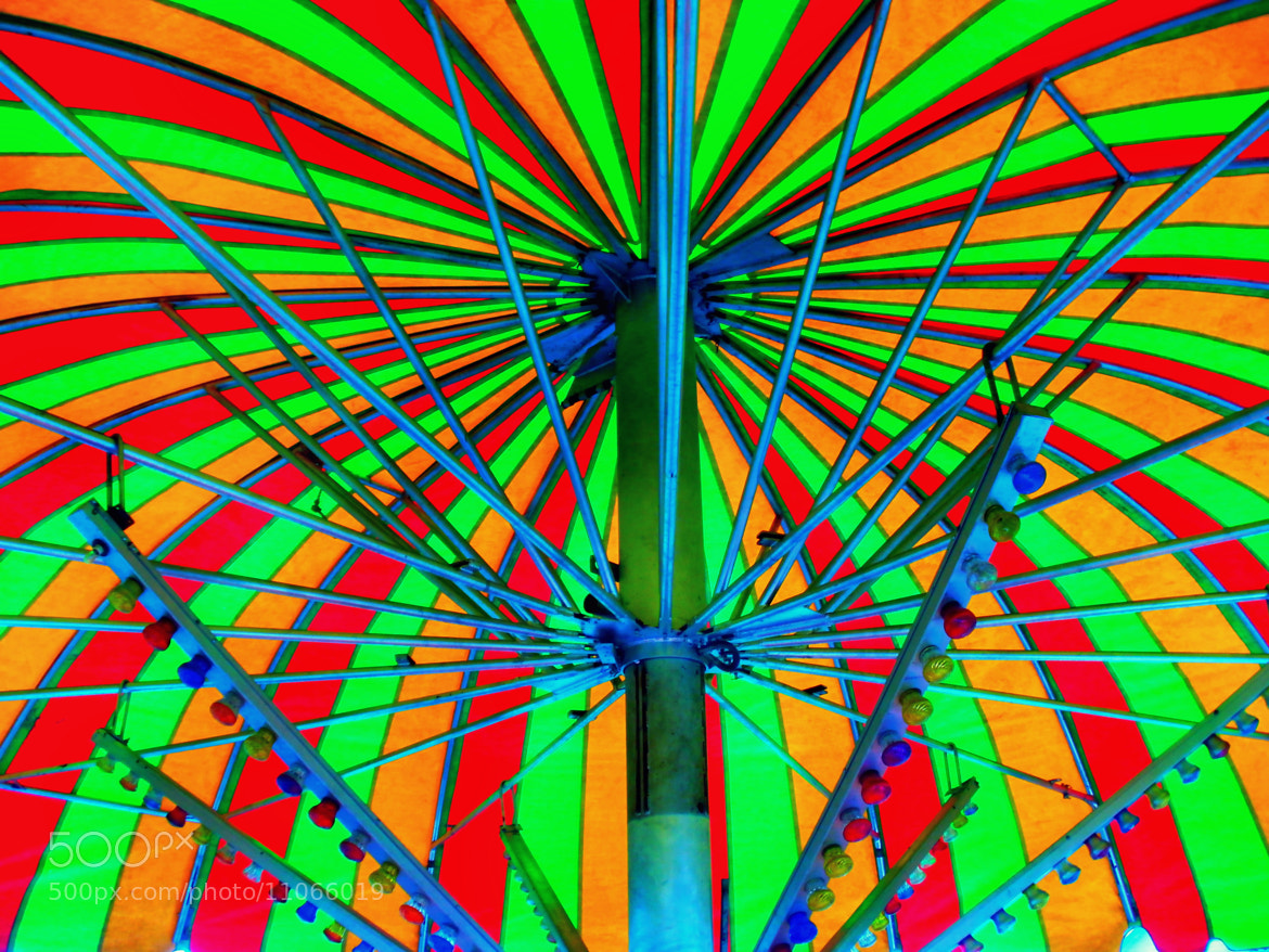 Photograph A Canopy Of Color by Dave Linscheid on 500px