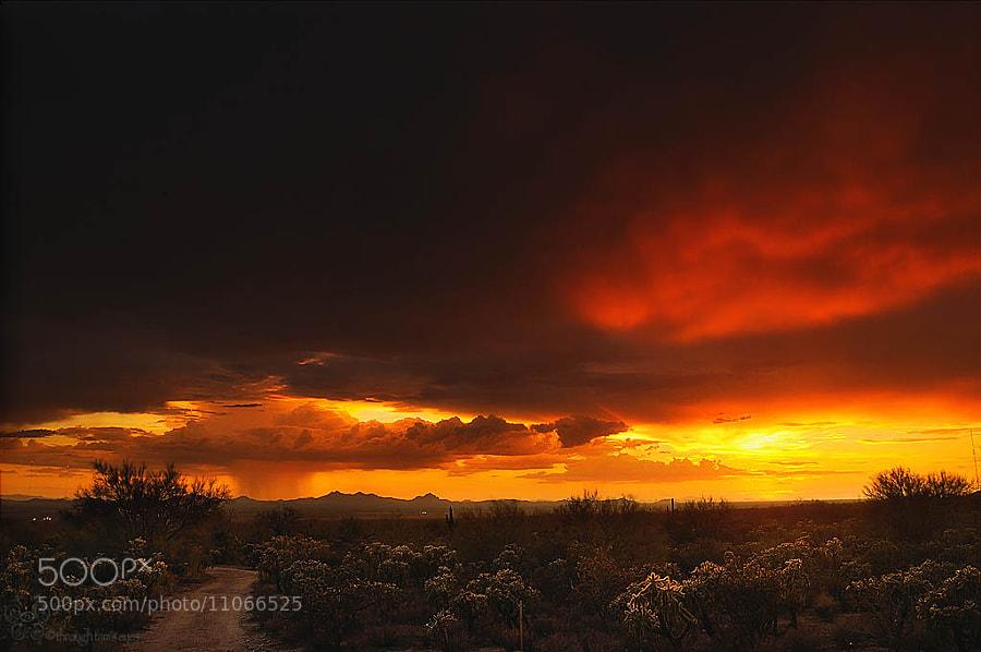 Taken in Marana, AZ on July 23, 2012.  It was an amazing sunset!