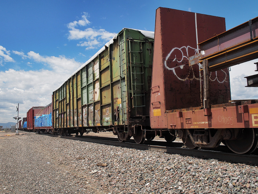 Photograph Freight Train (in color) by Nancy Lundebjerg on 500px