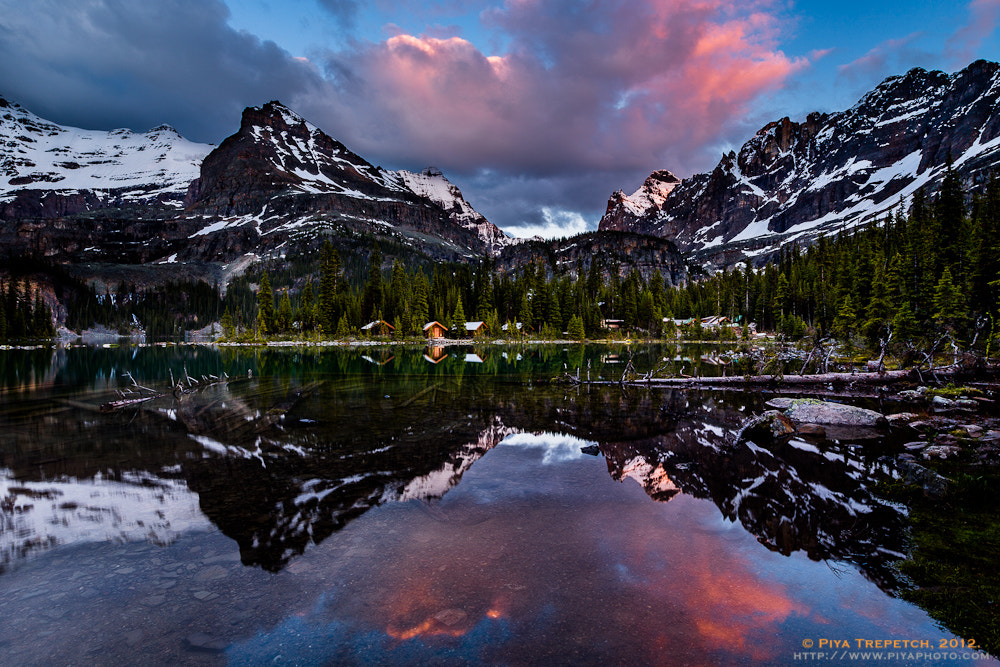 Photograph Lake O'Hara Twilight by Timothy Trepetch on 500px