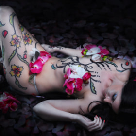 LAY ME ON THE BED OF PETALS