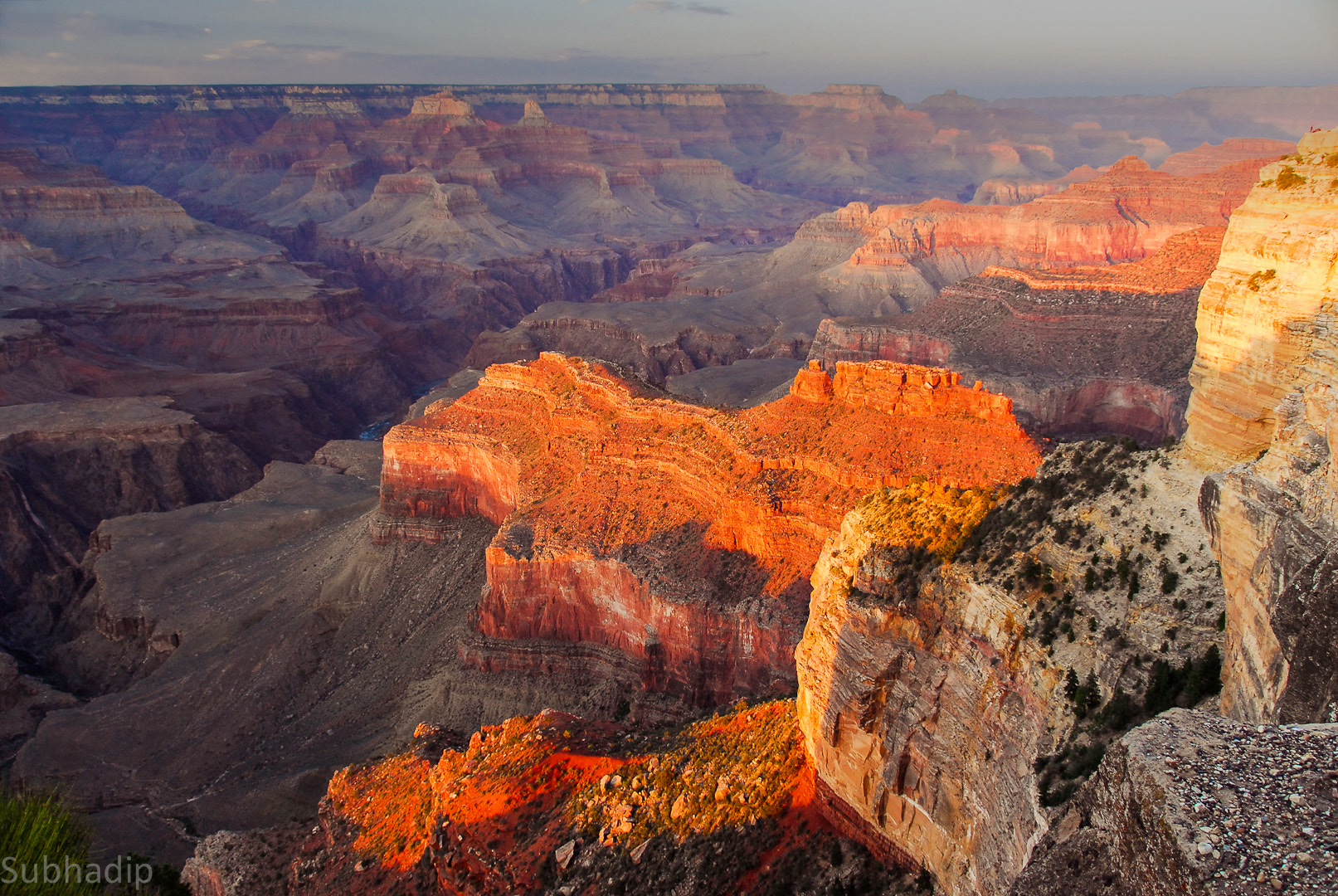 Photograph Golden Grand Canyon  by Subhadip Chatterjee on 500px