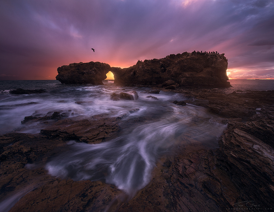 Photograph The Forlorn Gate by Ted Gore on 500px
