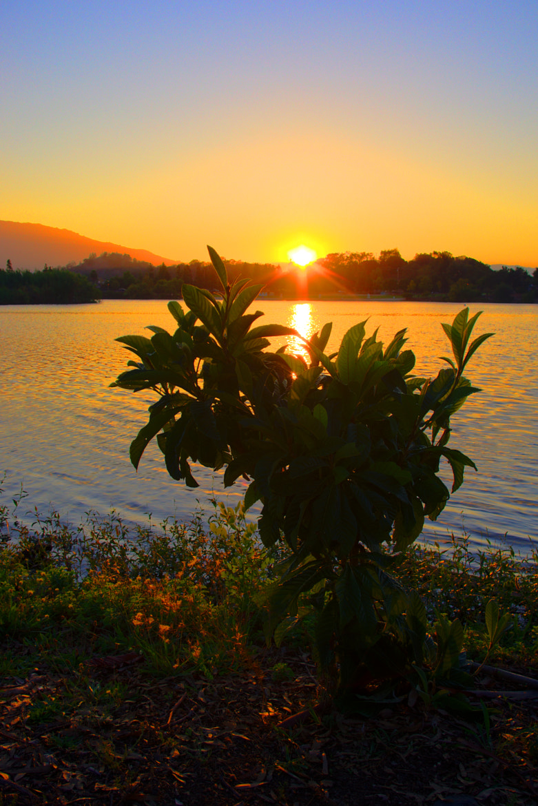 Photograph Sunset Together by Jherell Rabanal on 500px