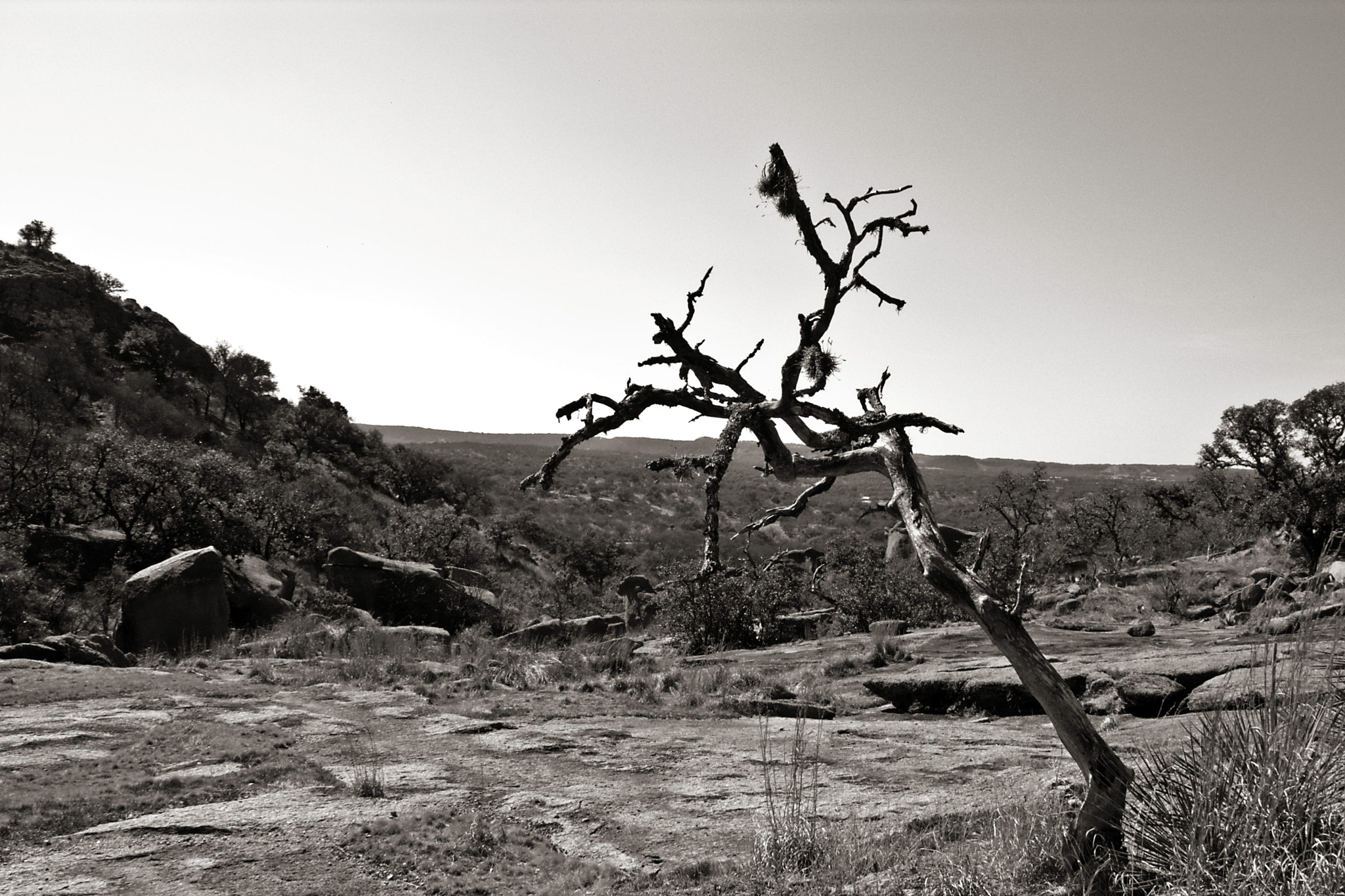 Photograph Death at Enchanted Rock by Just in Musing on 500px