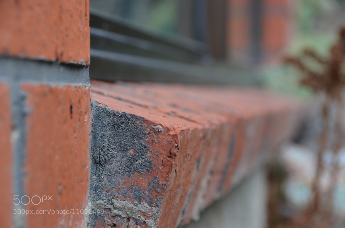 Photograph Bricks. by Francis Freeman on 500px