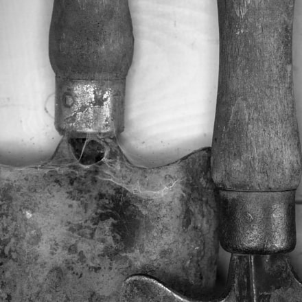 Old Trowels a, Canon EOS 5D MARK III, Canon EF 50mm f/2.5 Macro