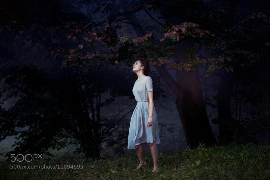 Photograph wonderland by Dasha Eliseeva on 500px