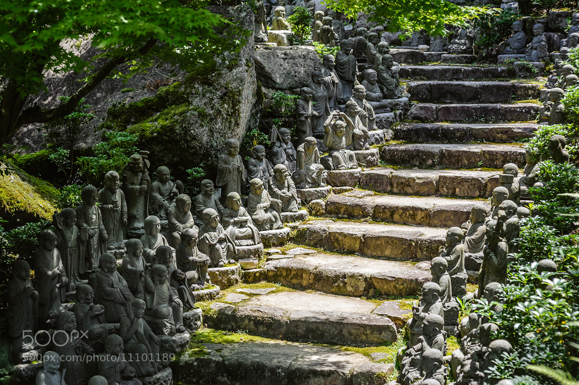 Photograph 500 Buddhas by Tobias Gass on 500px