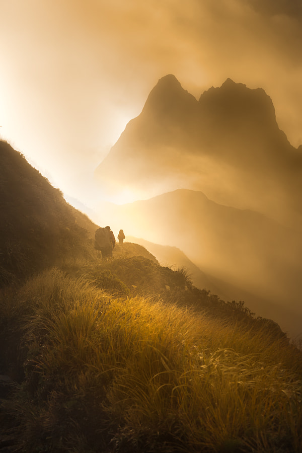 Photograph The Essence of New Zealand by Jesse Summers on 500px