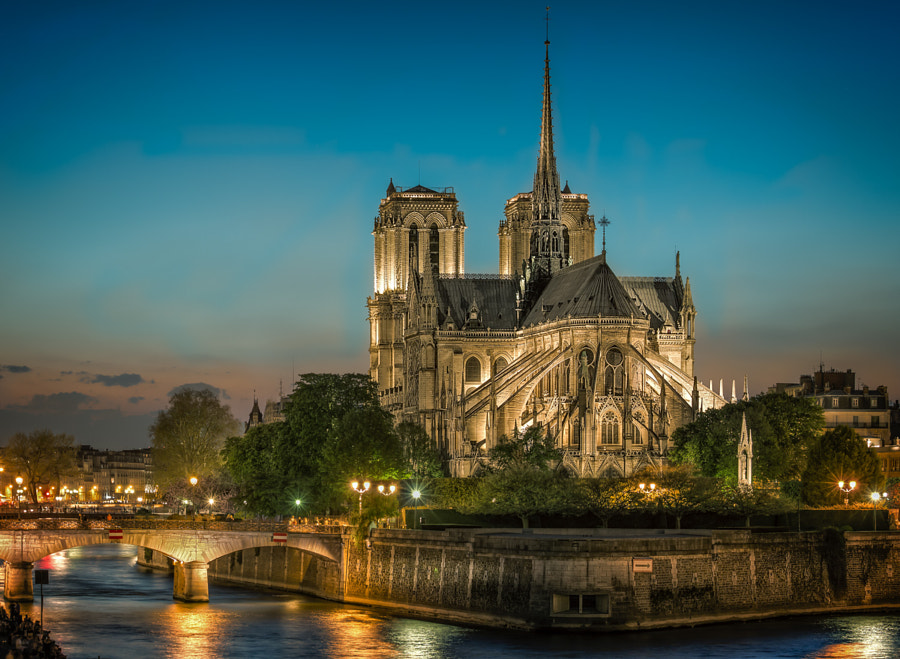 Notre Dame at dawn by Björn Jönsson on 500px.com