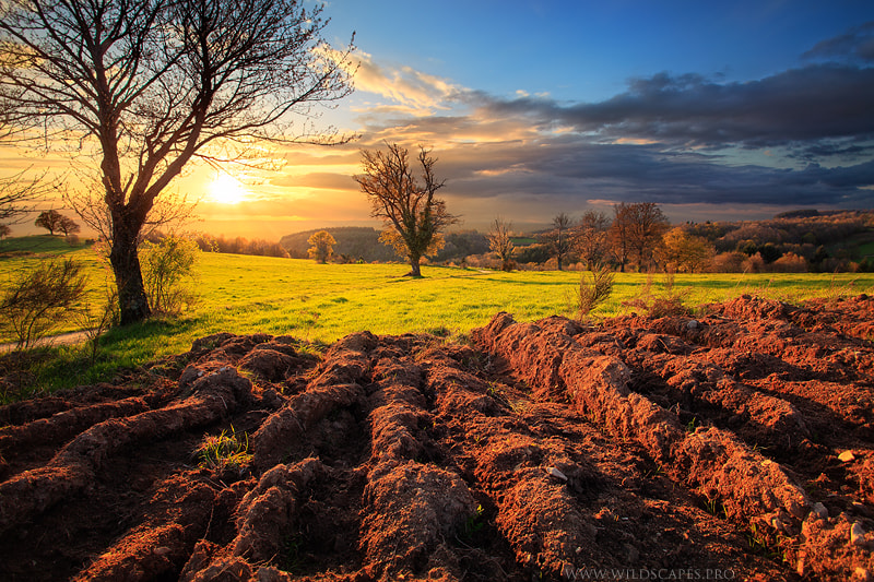 Photograph Farmland by Maxime Courty on 500px