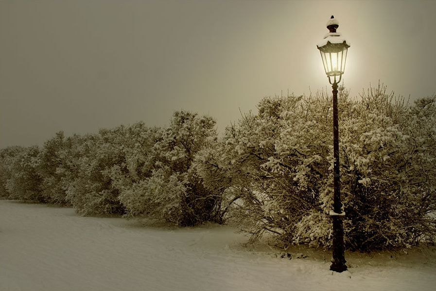 Photograph bewitched lantern by Tobias Zeising on 500px