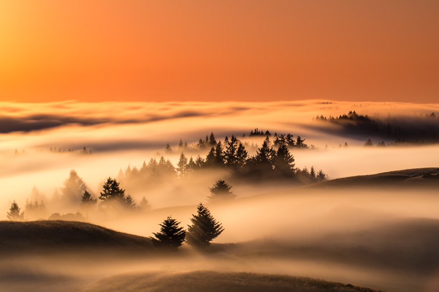 Mt Tam firing de Julien Bacal en 500px.com