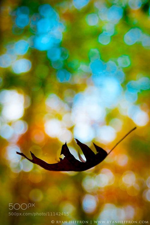 Photograph Float On by Ryan Heffron on 500px
