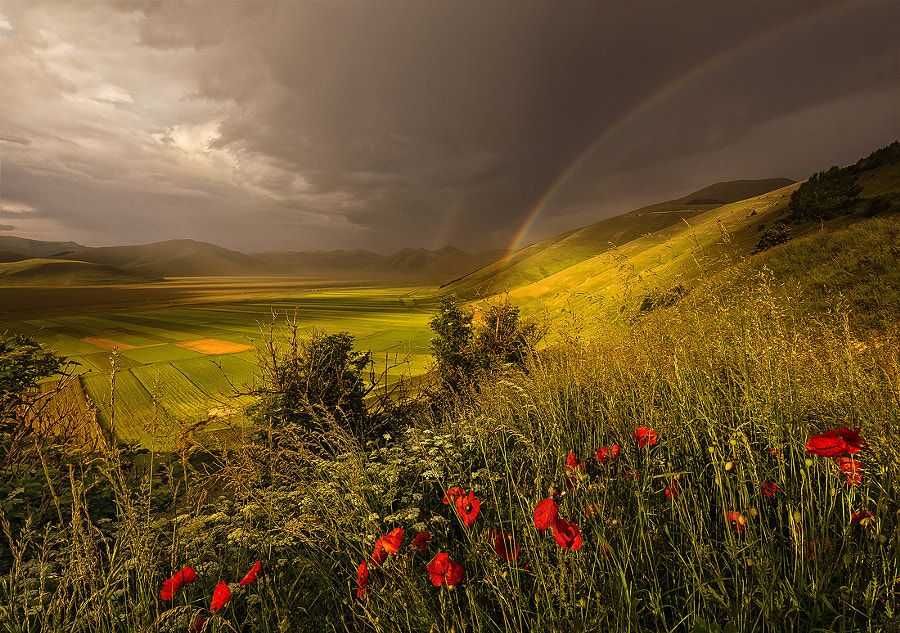 Photograph A new rainy day is coming by Dino Marsango on 500px