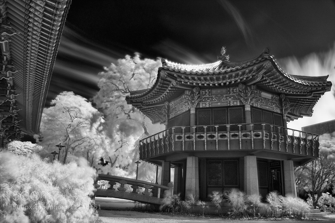 Photograph UH Korean Studies IR by Marshall Humble on 500px
