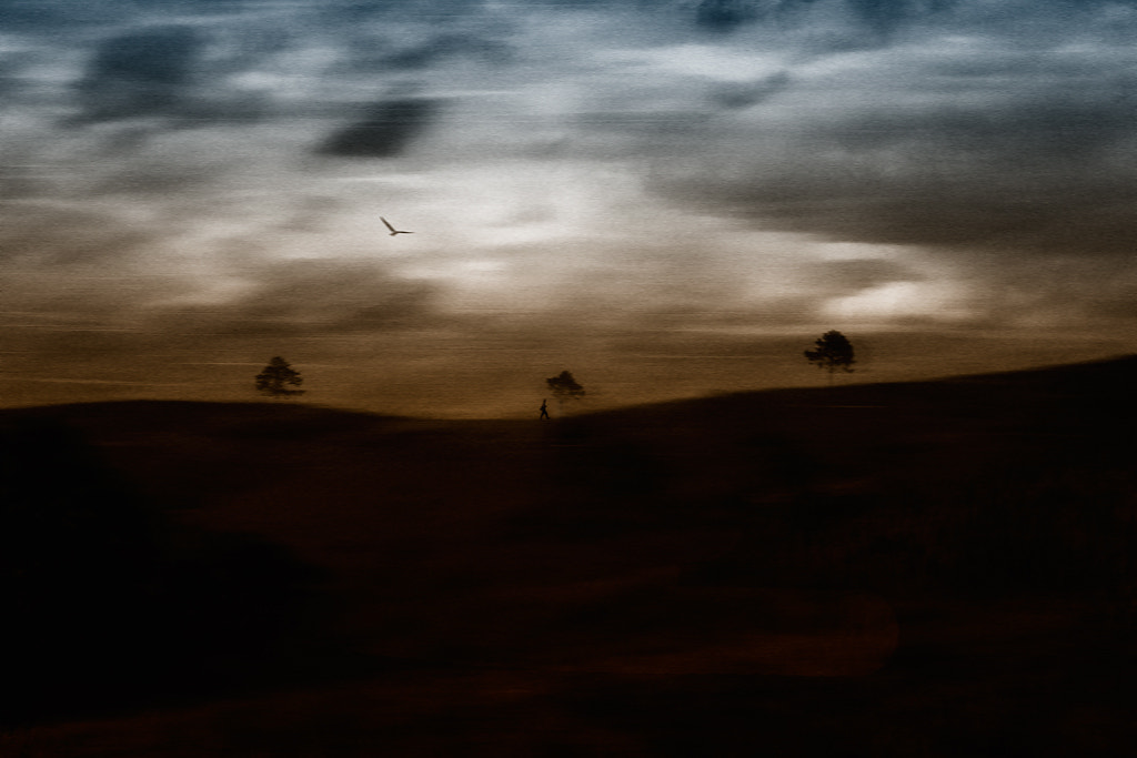 Photograph The land before tomorrow by ausadavut sarum on 500px