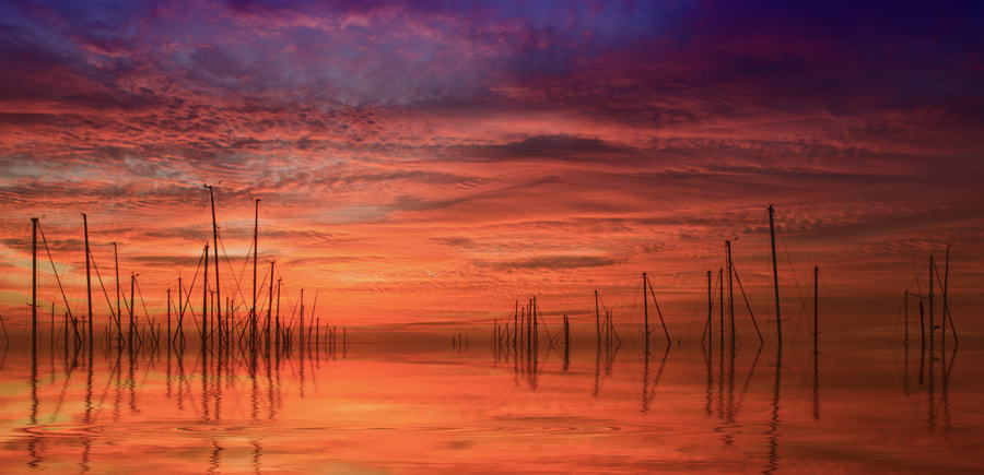 Dream Sunrise by Margaret Morgan on 500px.com