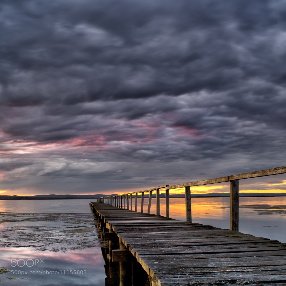 Photograph Pink Thunder by Timothy Poulton on 500px