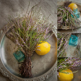 heather tea with lemon by Yulia Pletinka (podsolunuh)) on 500px.com
