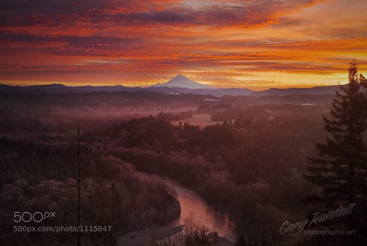 Photograph Mahogany Morning by Gary Randall on 500px