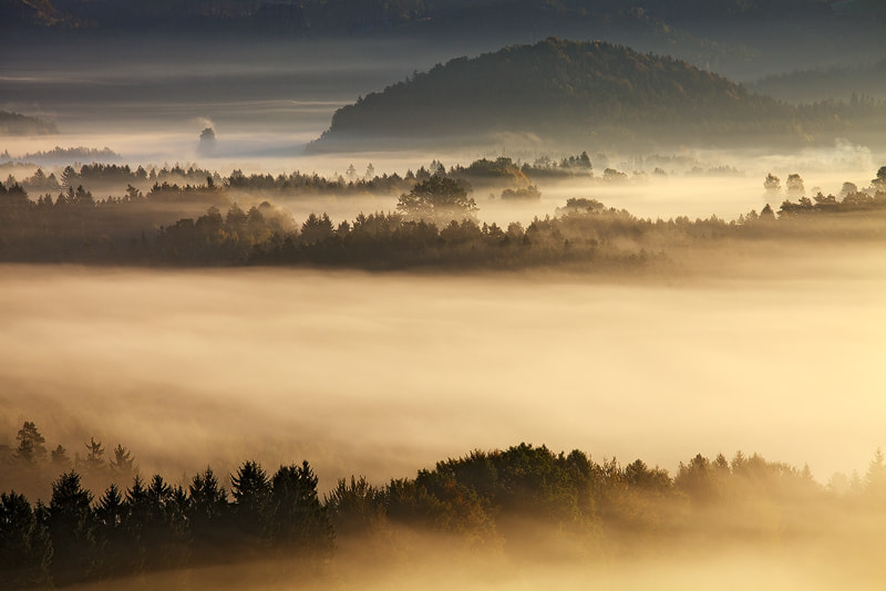 Photograph ...misty... by Martin Rak on 500px