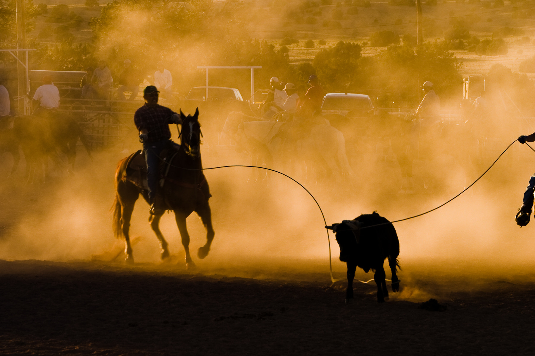 Photograph Rodeo at dust by Gianluca Colla on 500px
