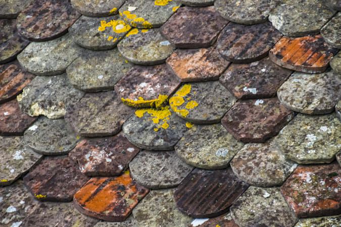 Chillon Roof Tiles