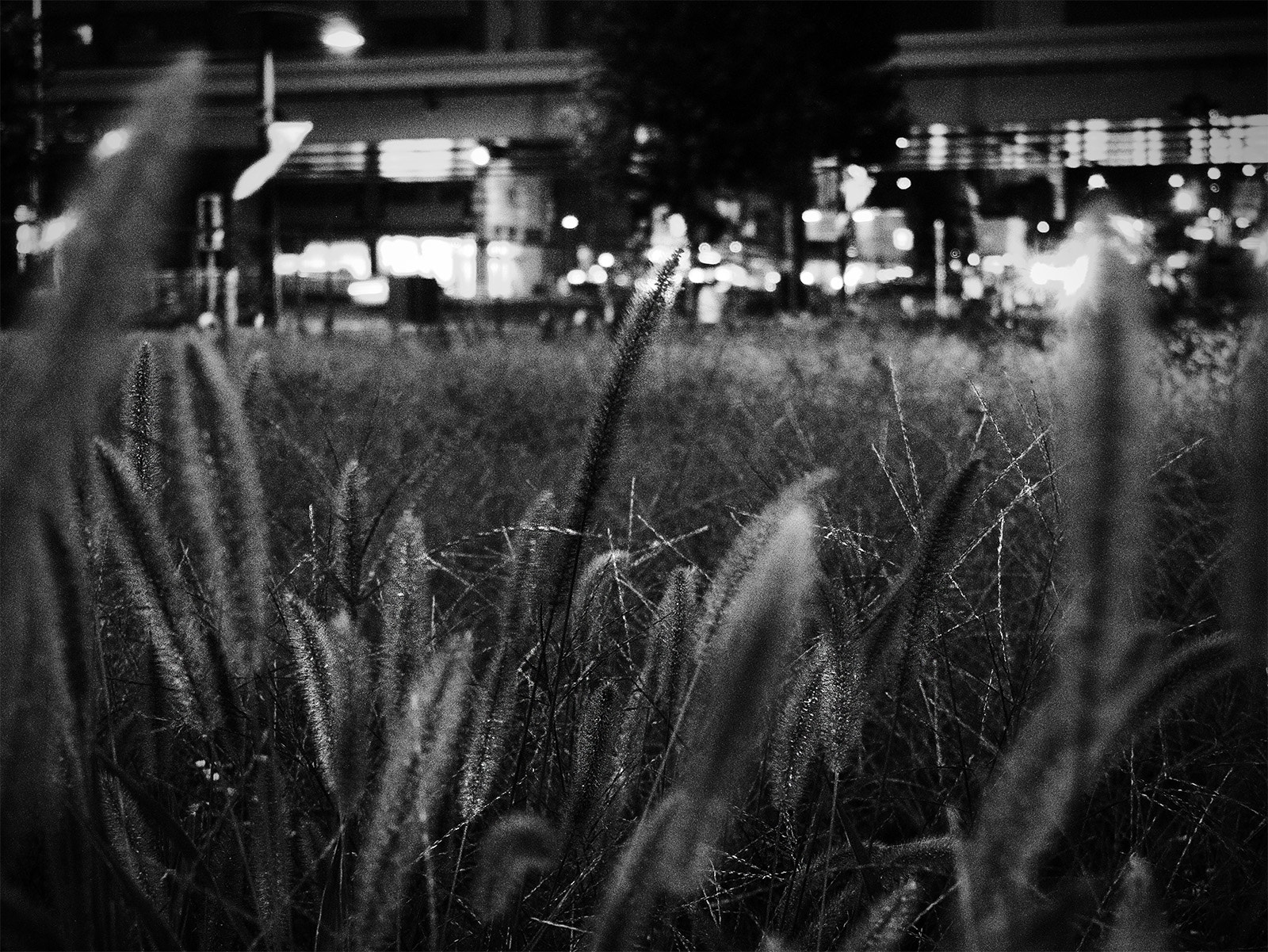 Photograph a vacant lot by Takuji Sato on 500px