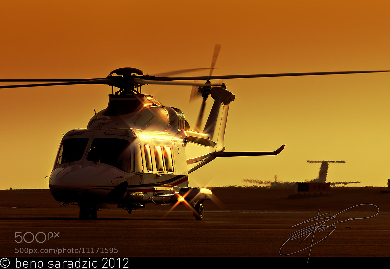 Photograph Shiny beast by Beno Saradzic on 500px