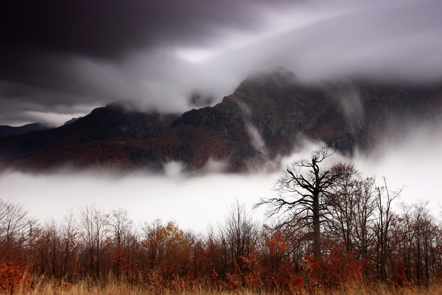 Photograph Balkan Autumn by Pavel Pronin on 500px