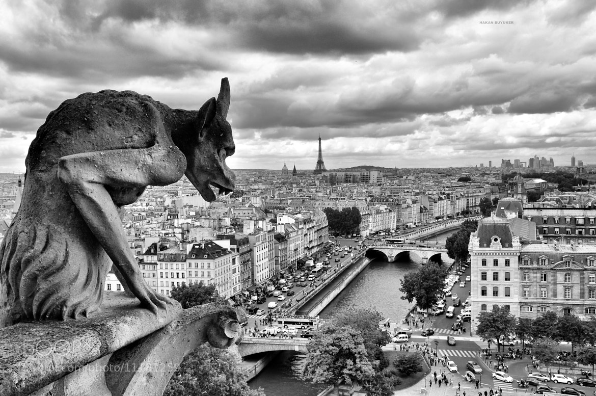 Photograph Paris,Notre Dame by Hakan Buyuker on 500px