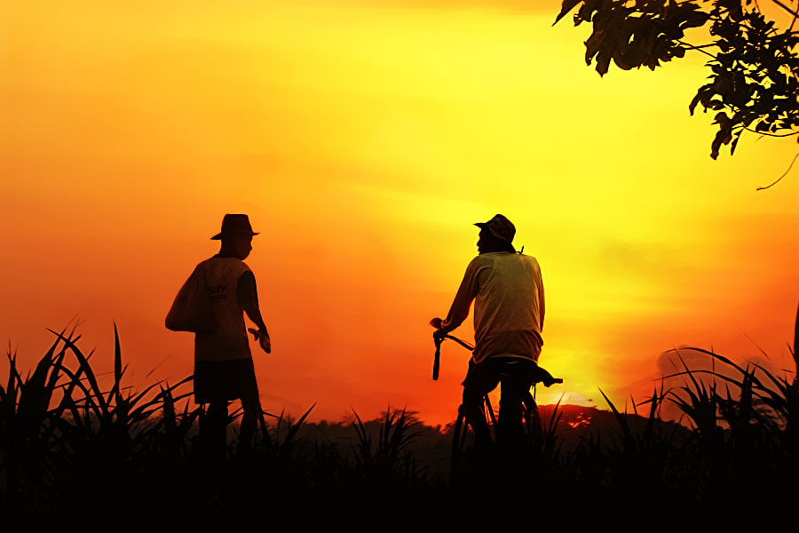 Photograph two farmers by 3 Joko on 500px