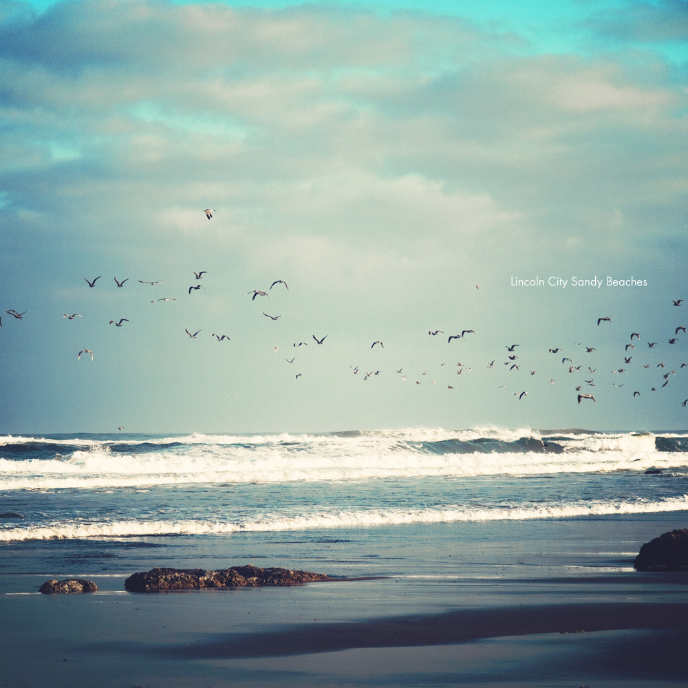 Photograph Lincoln City by Kyle Mahoney on 500px