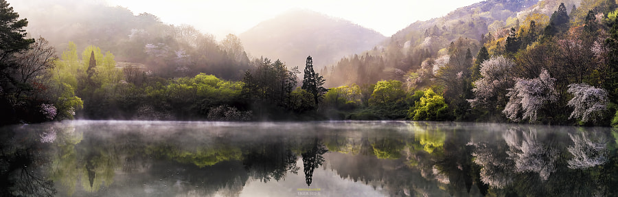 Photograph Panorama by Tiger Seo on 500px