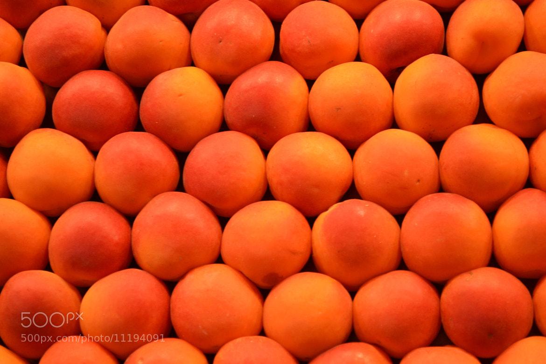 Photograph Orange world by Chiara cirioni on 500px