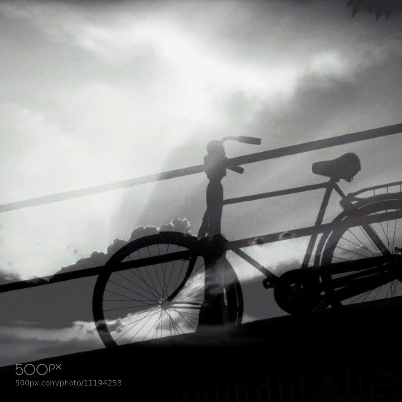 Photograph Upward mobility by lydia davison whitcomb on 500px