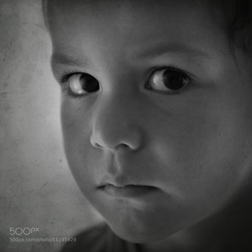 Photograph 219/365 by giozi on 500px