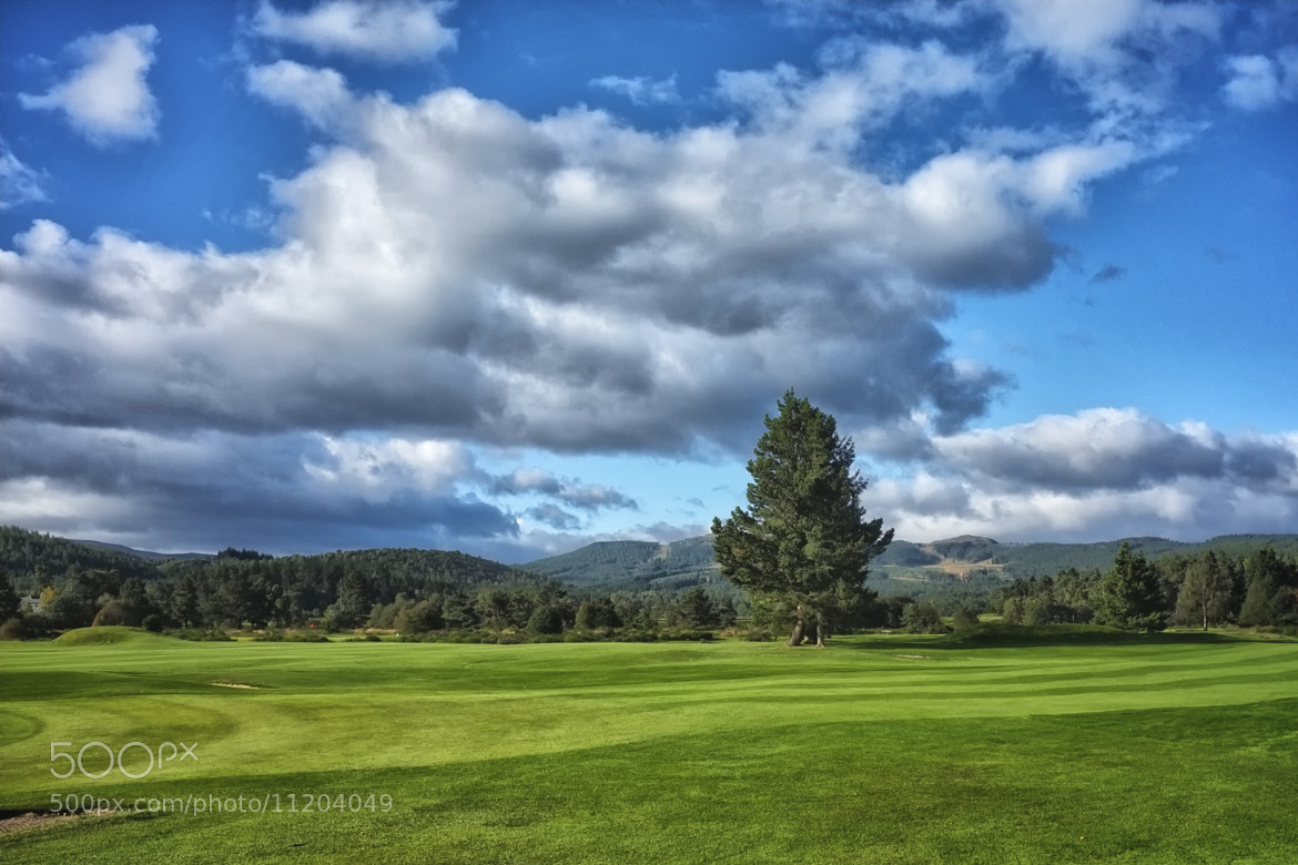 Photograph Anyone for golf by James Pattinson on 500px