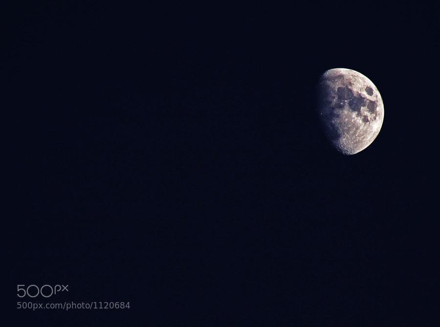 Photograph 93/366 by Kamila  Shakhzadaevna on 500px