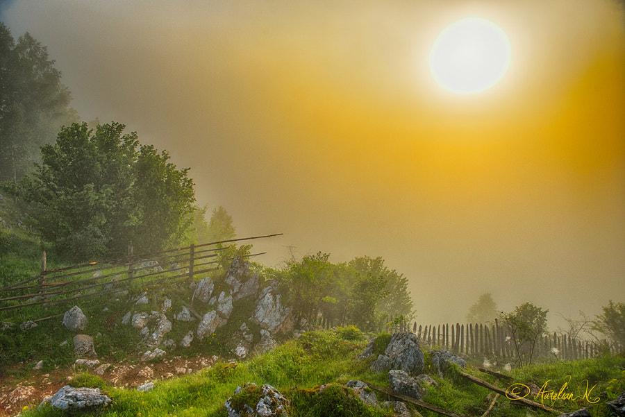Sunrise in Fundatura Ponorului