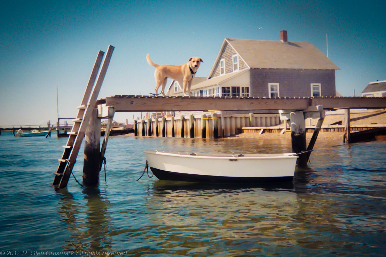 Photograph Tippy on the Dock by R. Glen Grusmark on 500px