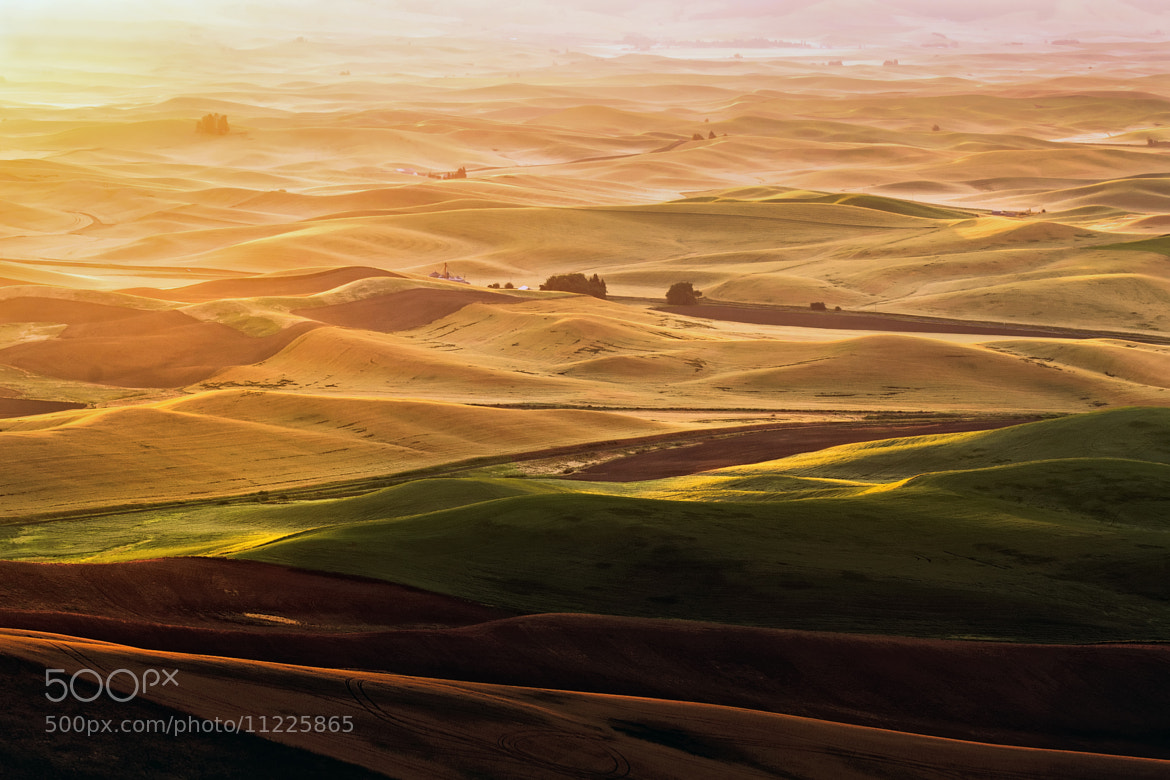 Photograph Sunrise at Palouse Hills  by Noppawat Charoensinphon on 500px