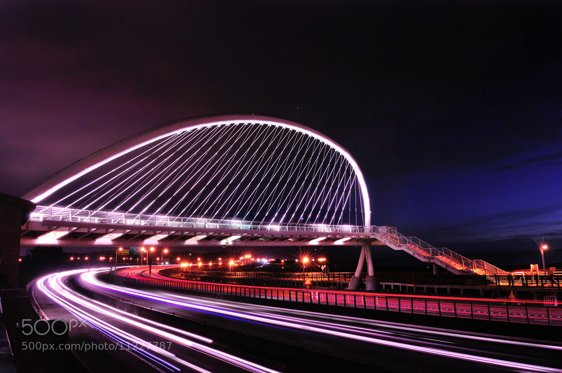 Photograph Harp Bridge by lily su on 500px