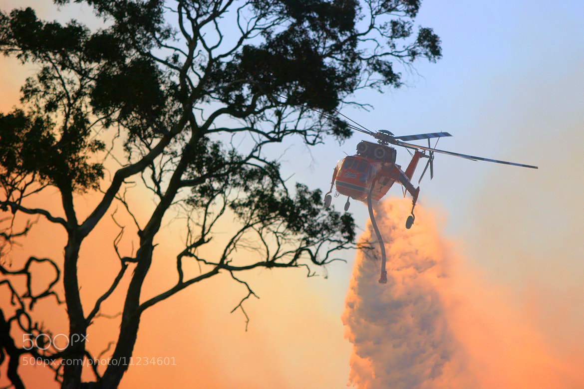 Photograph 'Elvis' the fire bomber by Richard Baxter on 500px