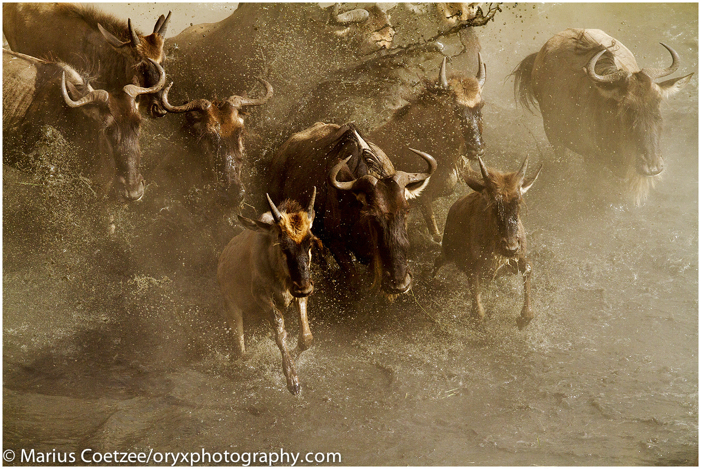 Photograph Epic Crossing by Marius Coetzee on 500px