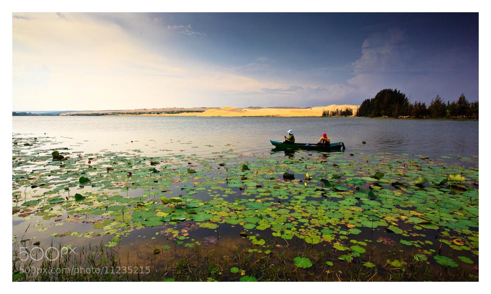 Photograph Lotus swamp, Vietnam by Peter Pham on 500px